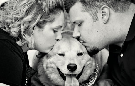 A couple during their engagement photo session kissing their loved doggy